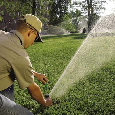 Правильно поливать рулонный газон
